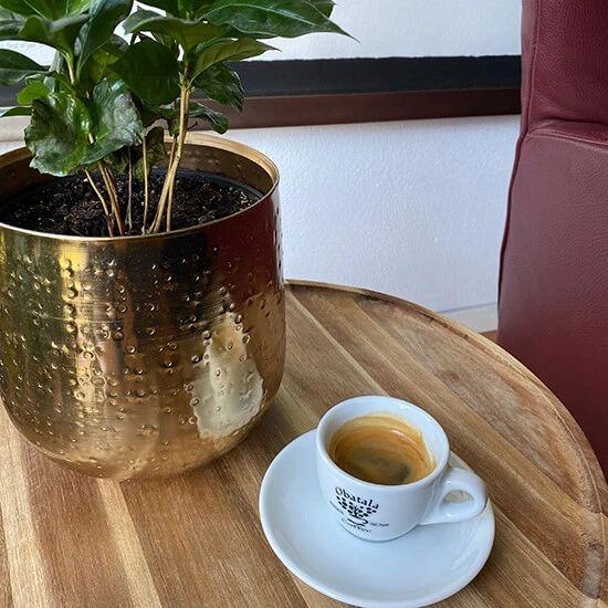 Je hebt nu zelf de perfect espresso gemaakt. Roer hem even met een lepeltje en genieten maar!